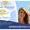 00aWhale-Watchers-in-Muizenberg-Self-Catering-Apartment